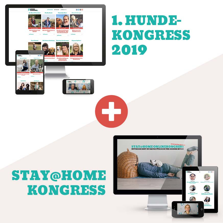 Kongress-Bundle 2 in 1